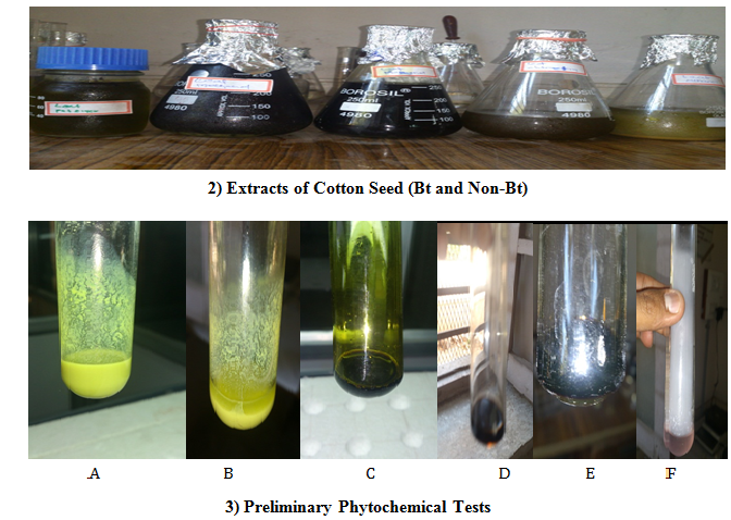 A) & B) - Yellow color Steroids confirm color test C) - Bluish green Phenols confirm color test D) & E) - Bluish red Cardio glycosides confirm color test F) - Color less solution Flavonoids confirm color test