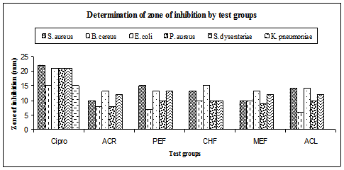 Antibacterial activity by Kaempferia galanga. Klebsiella pneumoniae was not inhibited by any of the extracts. ACR =Acetone extract of rhizome, PEF= Petroether fraction of rhizome, CHF=Chloroform fraction of rhizome MEF=Methanol fraction of rhizome and ACL=Acetone extract of leaf, Cipro = Ciprofloxacin.