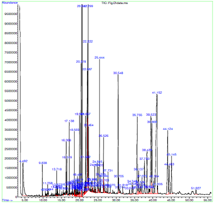 GCMS chromatogram of extract of Figs (Ficus carica)