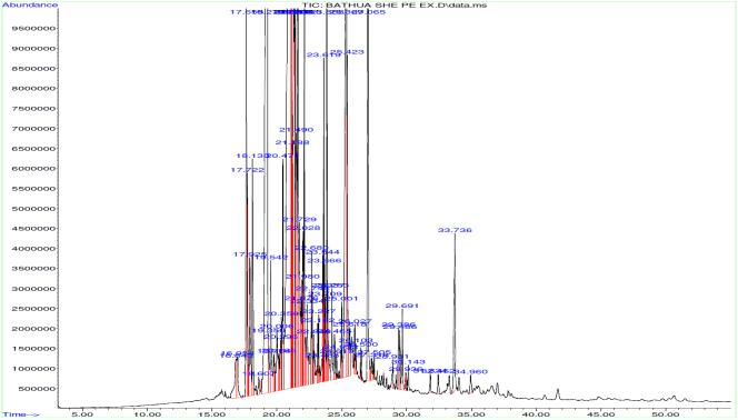 GC/MS chromatogram of PE extract of C. album