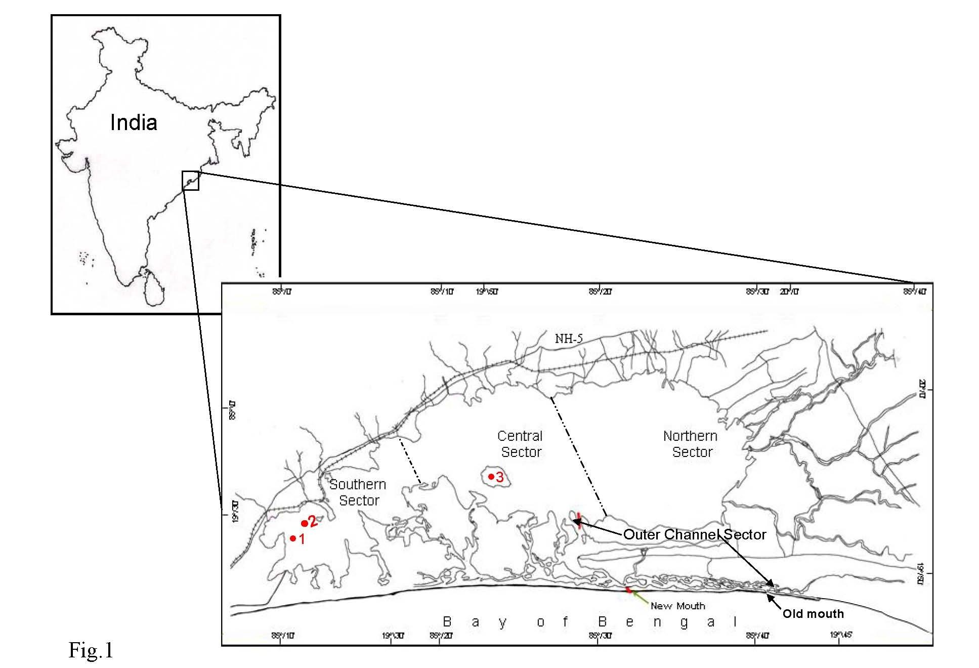Location map of Chilika lagoon showing collection sites. 1. Bird's Island, 2. Honeymoon Island and 3.Kalijai.