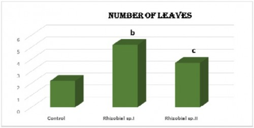 Effect of Biofertilizers on number of leaves of fenugreek plants. Column bearing superscript are statistically significant (p< 0.05 LSD) with respective control. a = p< 0.0001, b = p< 0.001, c = p< 0.01 and d = .05